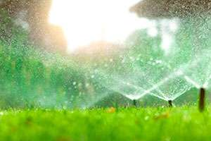 2 Spooky Things That Can Damage Your Irrigation System