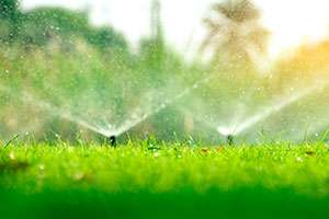 Pros and Cons: Is A Residential Irrigation System Actually Worth the Money?