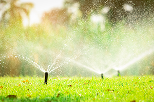 3 Important elements of DIY Irrigation System Installations
