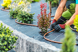 Manual Vs. Automatic Irrigation Systems: What's Right for Me?
