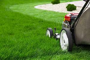 3 Tips for Mowing Your Grass