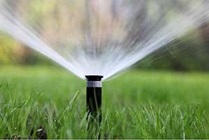 3 Key First Steps to an Irrigation System